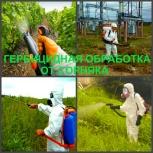 Гербицидная обработка Воронеж, от сорняков в Воронеже, Воронеж